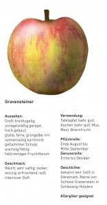 Apfelsorten_Franziska_Schmidt_Lena_Kösters_Ansicht2